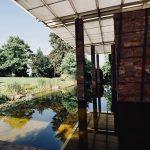 visiter-bale-suisse-fondation-beyeler-2